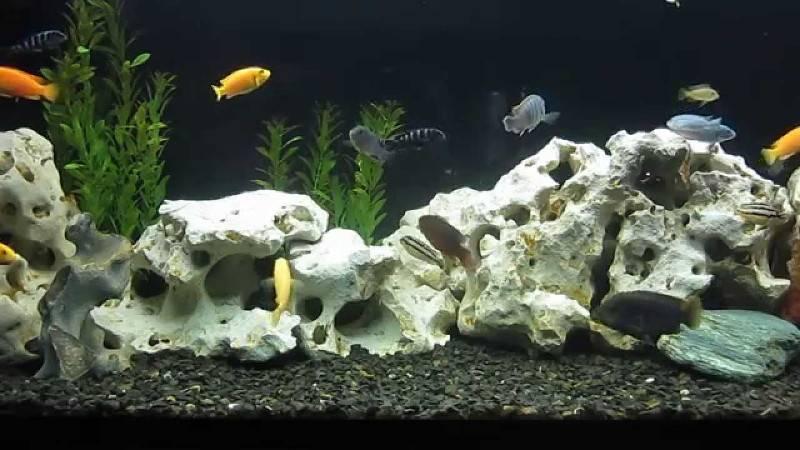 Декорирование аквариума камнями