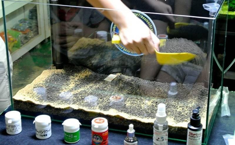 Помещаем грунт в аквариум
