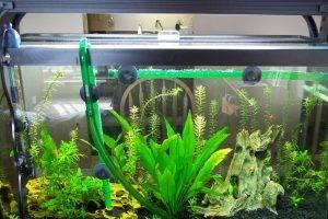 Делаем аквариумные растения своими руками 86