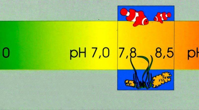 pH в аквариуме
