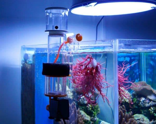 Скиммер для аквариума
