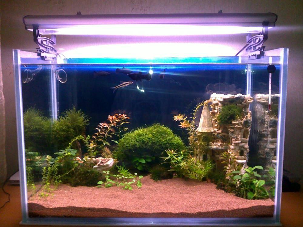 Красивый грунт в аквариуме