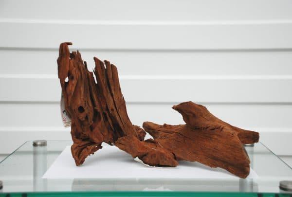 Мангровая коряга для аквариума на фото