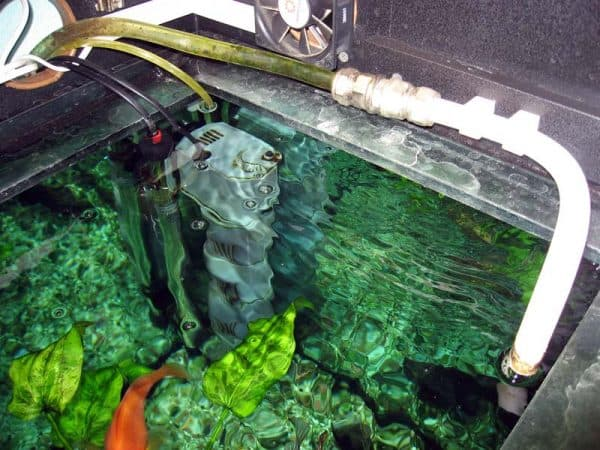 Как устранить из воды газообразный хлор