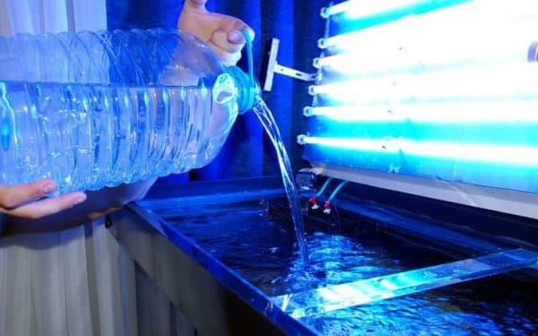 Сколько времени нужно отстаивать воду для аквариума читайте статью