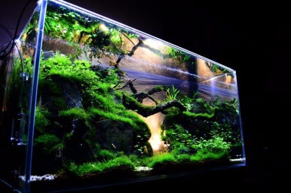 Как правильно вычислить объем аквариума в литрах