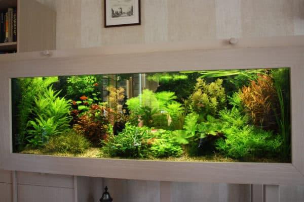 Как вычислить объем аквариума в литрах