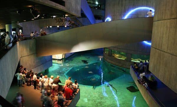 Национальный аквариум Балтимор (США)