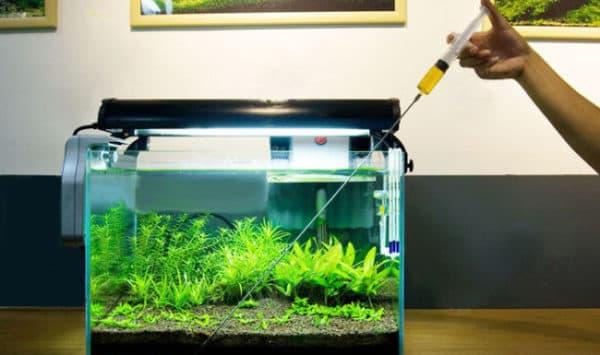 Удобрения для растений в аквариуме